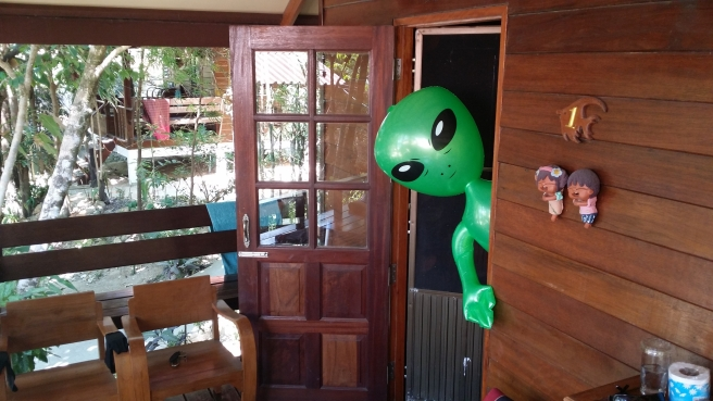 A green alien peeping out from the backdoor.